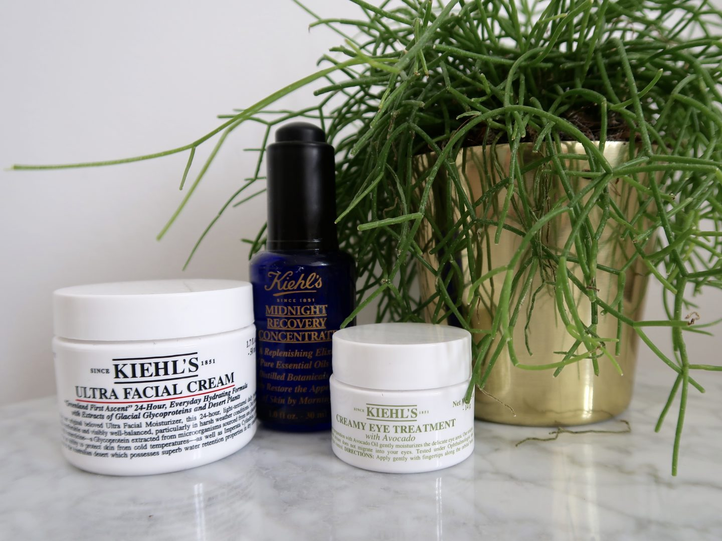 My favorite Kiehl's products that keep my skin moisturized